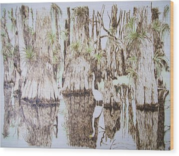 Florida Wildlife Pyrograpgic Portrait By Pigatopia Wood Print by Shannon Ivins