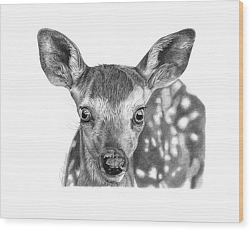 Florry The Fawn Wood Print by Abbey Noelle