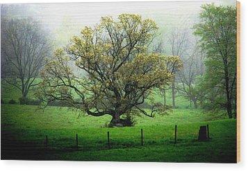 Flourish Where You Grow Wood Print by Angela Davies