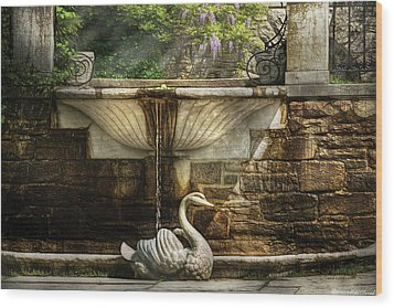 Flower - Wisteria - Fountain Wood Print by Mike Savad
