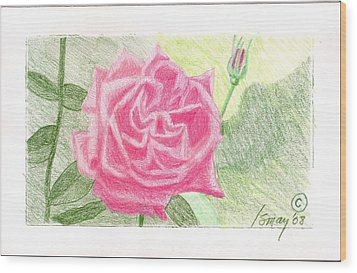 Flower 2 - The Confused Rose Wood Print