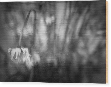 Flower #7421 Wood Print by Andrey Godyaykin