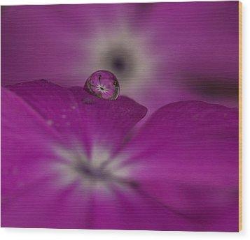 Flower Drop Wood Print