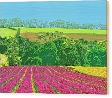 Flower Farm And Hills Wood Print by Dominic Piperata