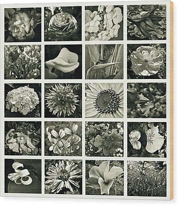 Flower Favorites Bw Wood Print by Gwyn Newcombe