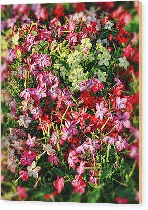 Flower Garden 1 Wood Print