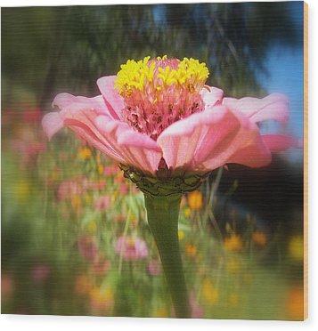 Flower Garden Wood Print by Dottie Dees