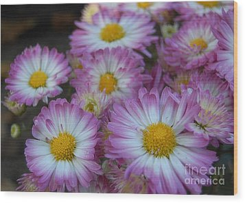 Flower Garden Wood Print by Garnett  Jaeger