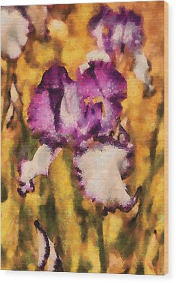 Flower - Iris - Diafragma Violeta Wood Print by Mike Savad