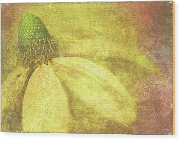 Flower Magnifico Wood Print by JQ Licensing