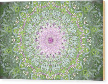 Wood Print featuring the photograph Flower Mandala - B by Anthony Rego
