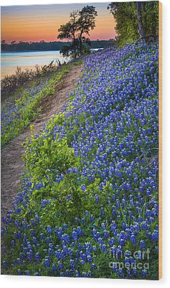 Flower Mound Wood Print by Inge Johnsson