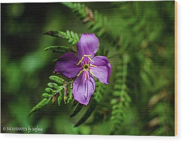 Flower On The Fern Wood Print
