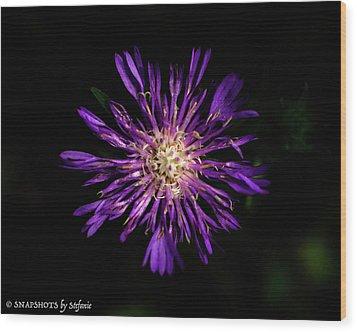 Flower Or Firework Wood Print by Stefanie Silva