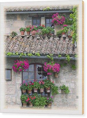 Flower Pots In Windows In Arles Wood Print by Carson Ganci