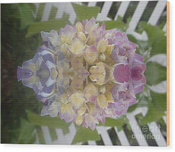 Flower Power Wood Print by Christina Verdgeline