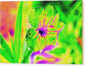 Flower Power Wood Print by Peter  McIntosh