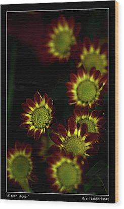 Flower Shower Wood Print by Sarita Rampersad