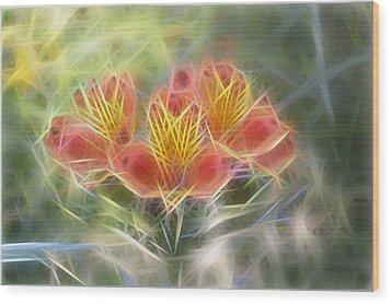 Flower Streaks Wood Print