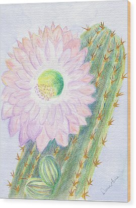 Flowering Cactus Wood Print by Dawn Marie Black