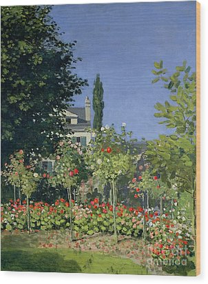 Flowering Garden At Sainte-adresse Wood Print by Claude Monet