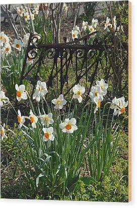 Flowers 157 Wood Print by Joyce StJames