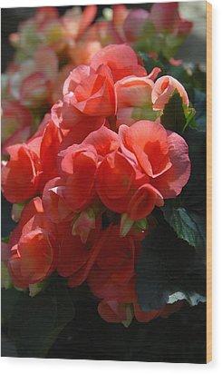 Flowers 160 Wood Print by Joyce StJames