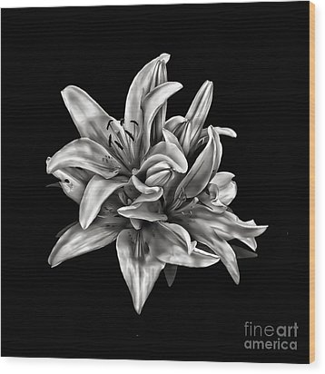 Flowers 8449 Wood Print by Walt Foegelle