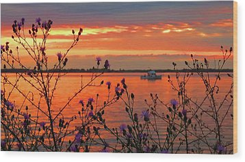 Flowers Along The Shore At Tibbetts Point  Wood Print