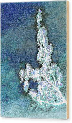 Flowers And Ice Wood Print