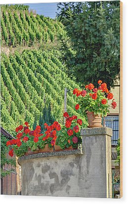 Flowers And Vines Wood Print by Alan Toepfer