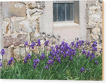 Flowers And Worn House Wood Print by Kathy Gibbons