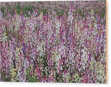 Flowers Forever Wood Print by Carol Groenen