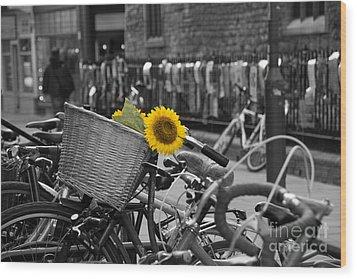 Flowers In Bike Wood Print by David Warrington