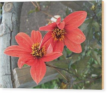 Flowers In Love Wood Print