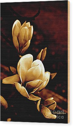 Flowers In Sepia  Wood Print