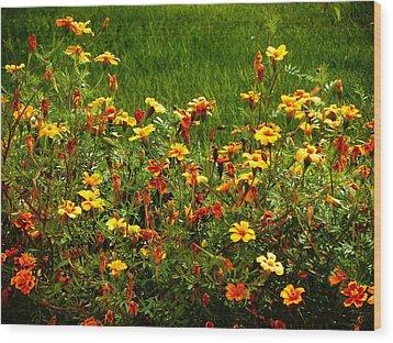 Flowers In The Fields Wood Print