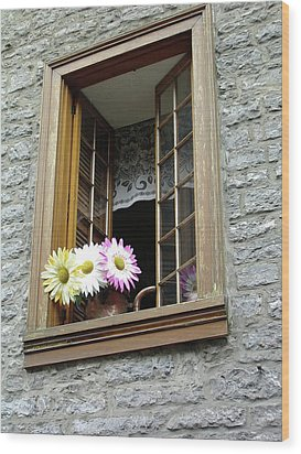 Wood Print featuring the photograph Flowers On The Sill by John Schneider