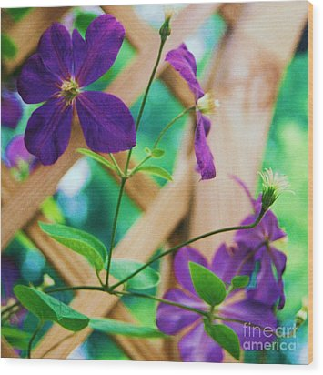 Wood Print featuring the painting Flowers Purple by Eric  Schiabor