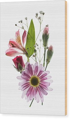 Wood Print featuring the photograph Flowers Transparent 1 by Tom Mc Nemar