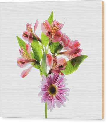 Wood Print featuring the photograph Flowers Transparent  2 by Tom Mc Nemar