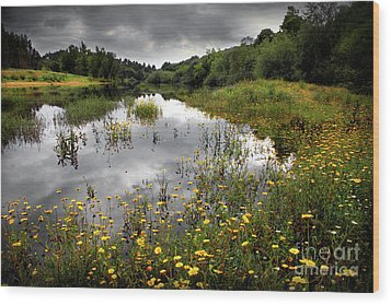Flowery Lake Wood Print by Carlos Caetano