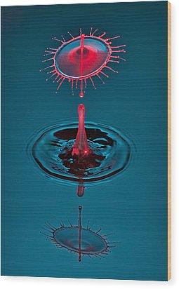 Fluid Parasol Wood Print by Susan Candelario