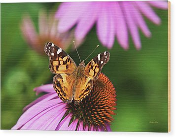 Fluttering Breeze Butterfly Wood Print by Christina Rollo