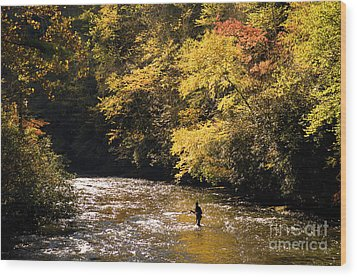 Wood Print featuring the photograph Fly Fisherman On The Tellico - D010008 by Daniel Dempster