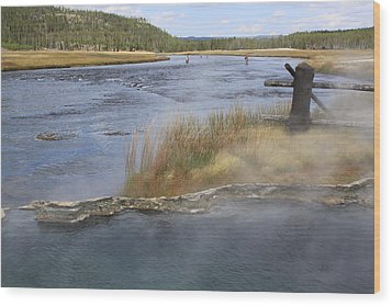 Fly Fishing And Geyser  Wood Print by Gayle Johnson