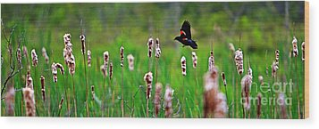 Flying Amongst Cattails Wood Print by James F Towne