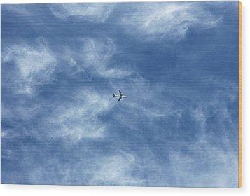 Flying Away Wood Print by Richard Newstead