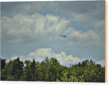 Flying Wood Print by Darlene Bell