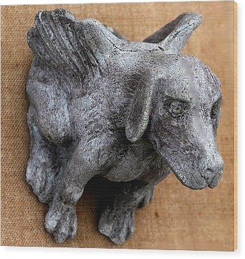 Flying Dog Gargoyle Wood Print by Katia Weyher